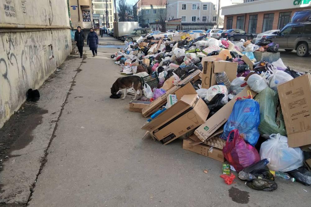 Проблемы вывоза мусора